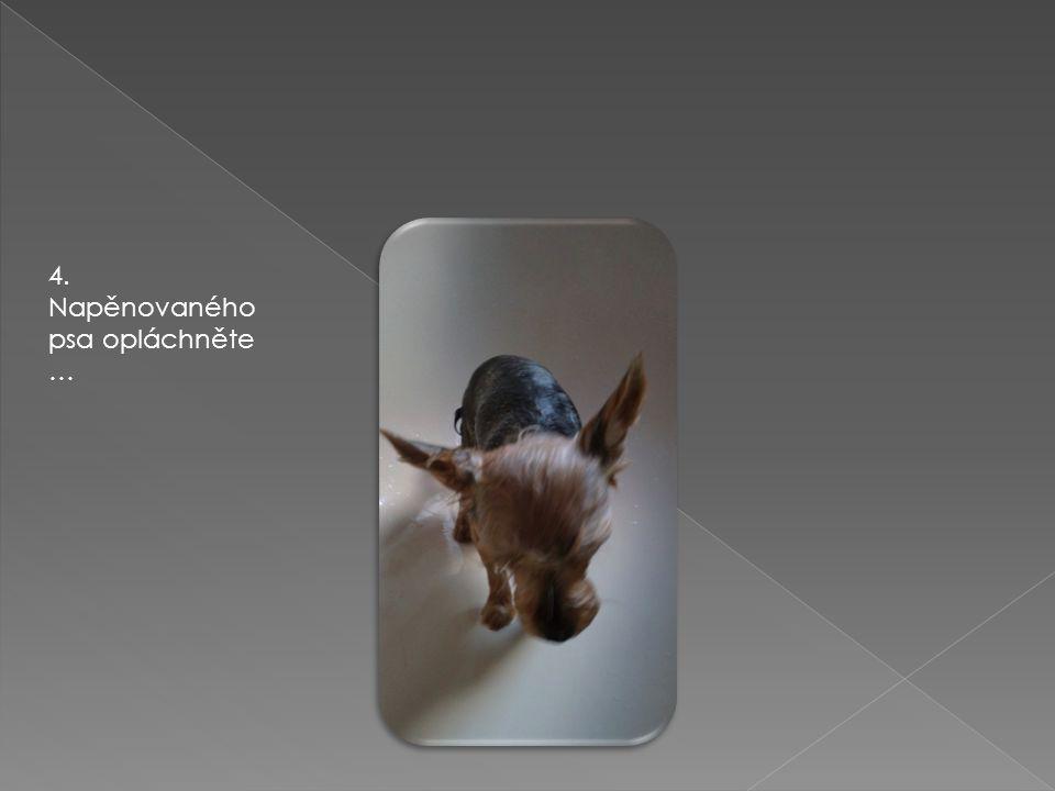 4. Napěnovaného psa opláchněte …