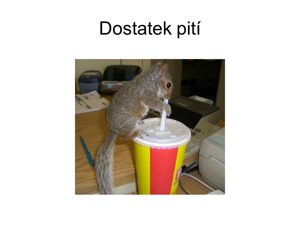 Dostatek pití
