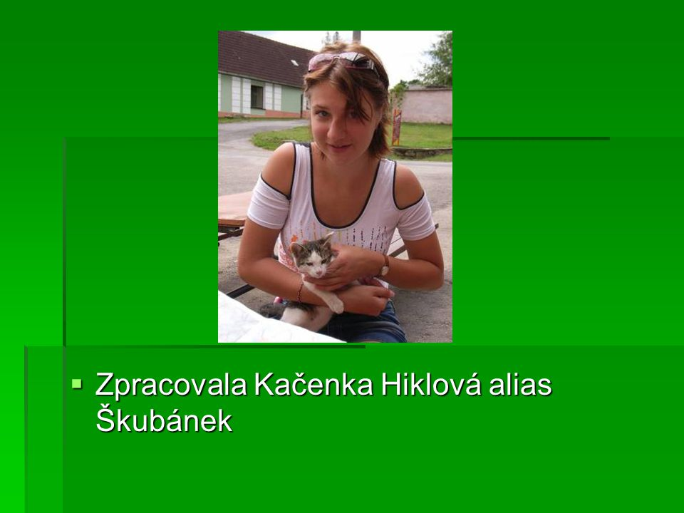  Zpracovala Kačenka Hiklová alias Škubánek