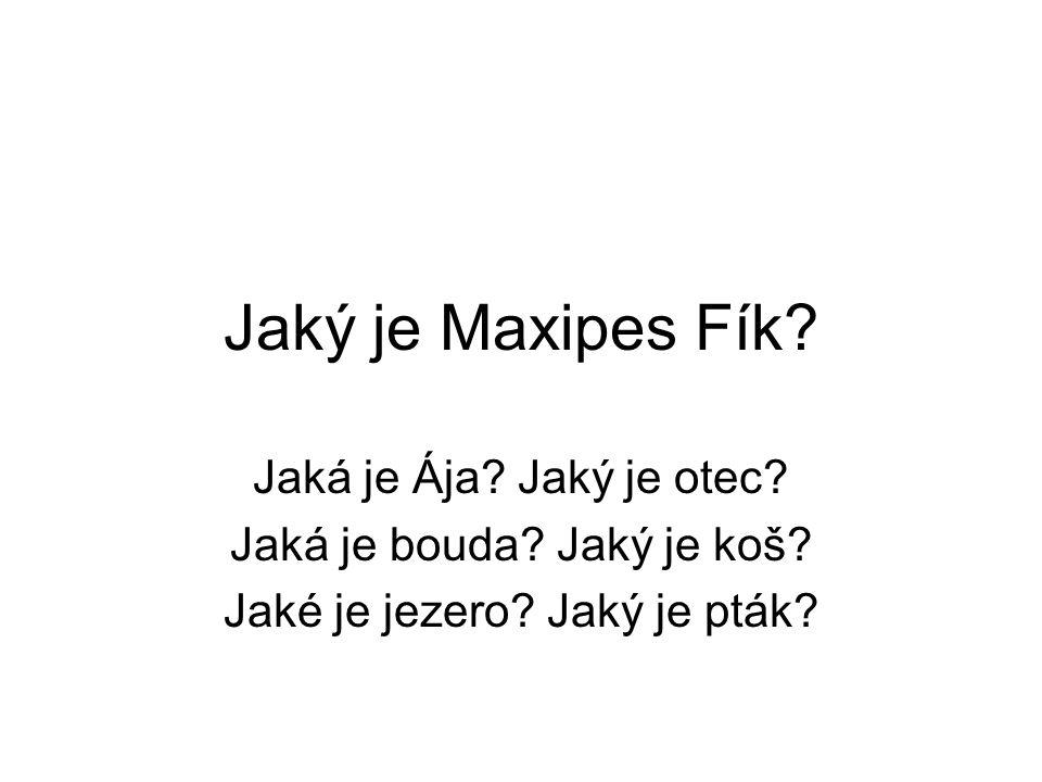 Jaký je Maxipes Fík. Jaká je Ája. Jaký je otec. Jaká je bouda.