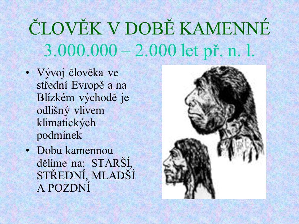 Čtyři vývojové stupně člověka Člověk zručný (homo habilis) Člověk vzpřímený (homo erectus) Člověk rozumný (homo sapiens) Člověk dnešního typu (homo sa