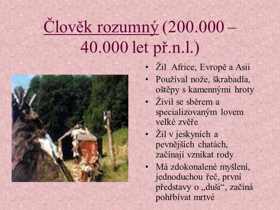 Člověk vzpřímený (1.500.000 – 200.000 let př.n.l.) Žil v Africe, Evropě, Asii Používal pěstní klín, dřevěné oštěpy, kostěné nástroje Živil se sběrem a