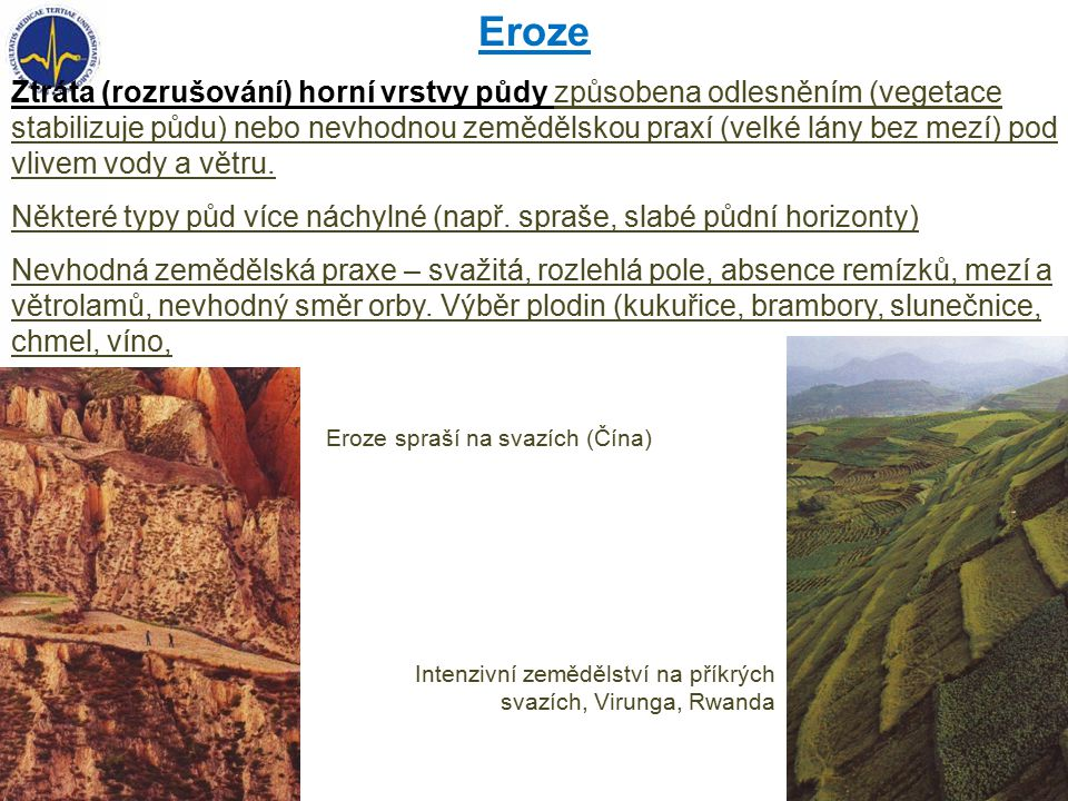 Eroze Ztráta (rozrušování) horní vrstvy půdy způsobena odlesněním (vegetace stabilizuje půdu) nebo nevhodnou zemědělskou praxí (velké lány bez mezí) pod vlivem vody a větru.