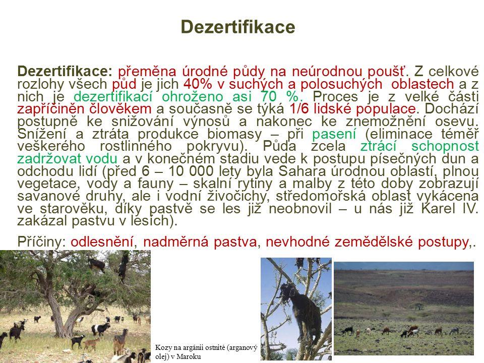 Dezertifikace Dezertifikace: přeměna úrodné půdy na neúrodnou poušť.