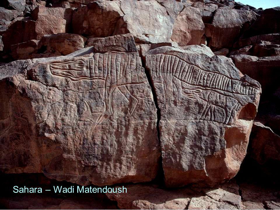 Sahara – Wadi Matendoush