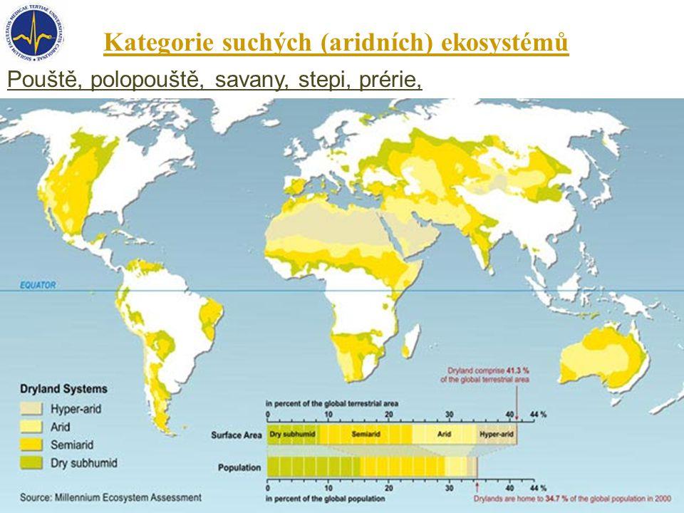 Kategorie suchých (aridních) ekosystémů Pouště, polopouště, savany, stepi, prérie,