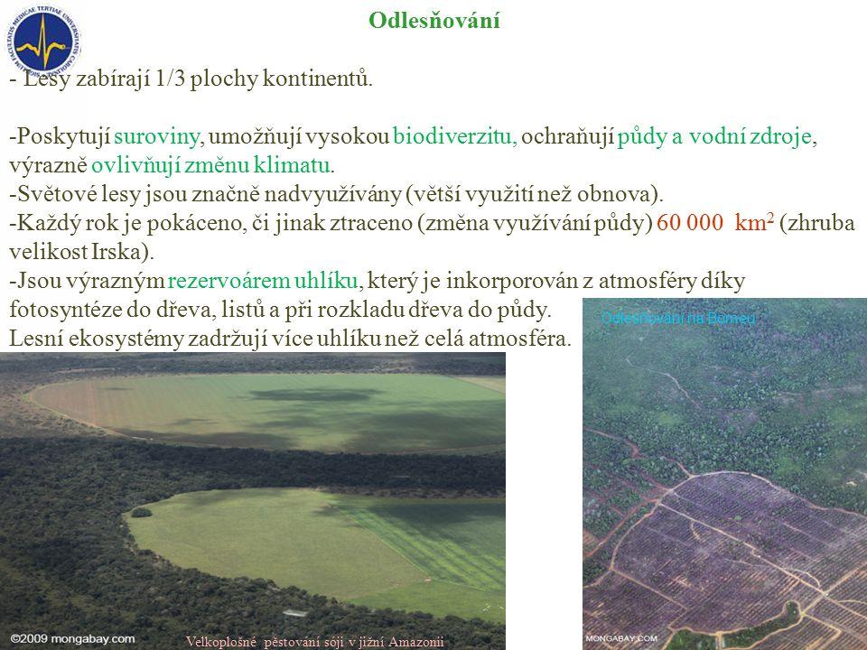 Odlesňování - Lesy zabírají 1/3 plochy kontinentů.