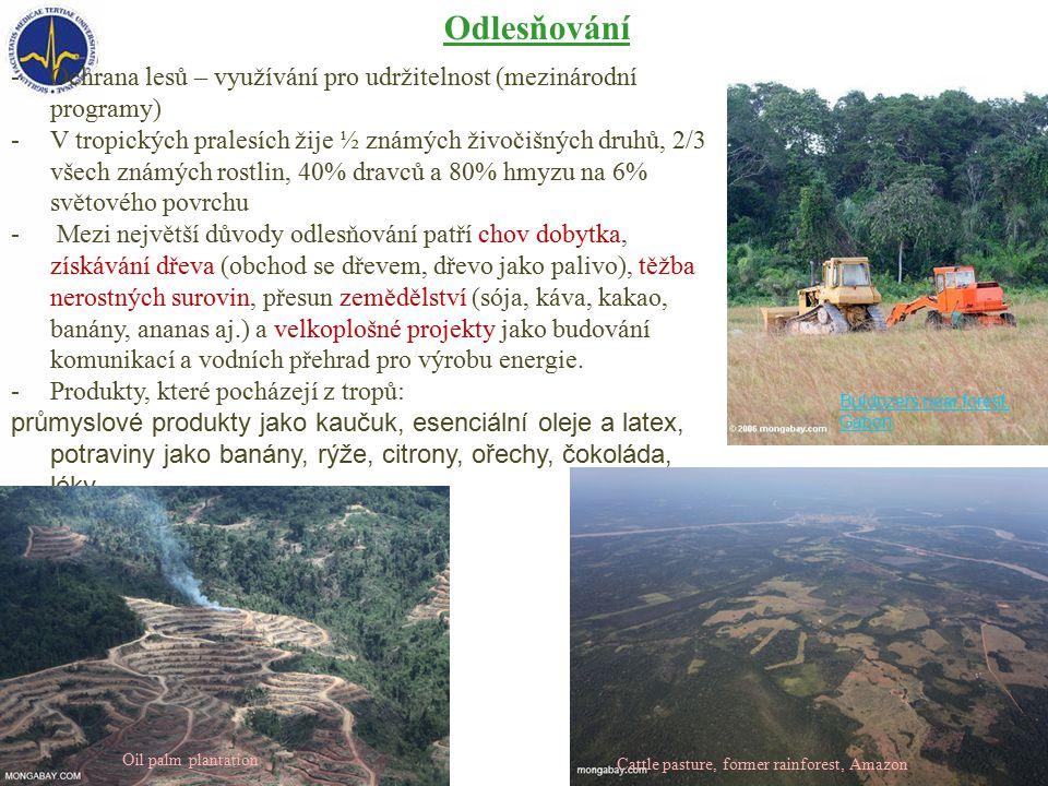 -Ochrana lesů – využívání pro udržitelnost (mezinárodní programy) -V tropických pralesích žije ½ známých živočišných druhů, 2/3 všech známých rostlin, 40% dravců a 80% hmyzu na 6% světového povrchu - Mezi největší důvody odlesňování patří chov dobytka, získávání dřeva (obchod se dřevem, dřevo jako palivo), těžba nerostných surovin, přesun zemědělství (sója, káva, kakao, banány, ananas aj.) a velkoplošné projekty jako budování komunikací a vodních přehrad pro výrobu energie.