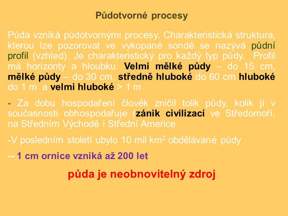 Půdotvorné procesy Půda vzniká půdotvornými procesy.