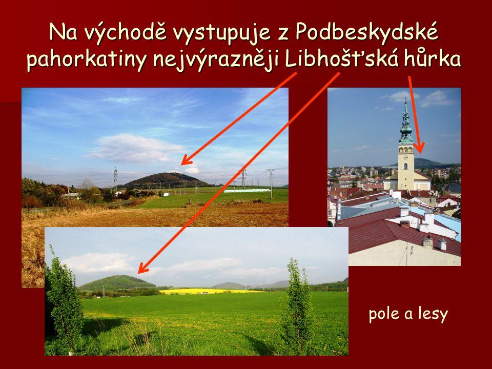 Na východě vystupuje z Podbeskydské pahorkatiny nejvýrazněji Libhošťská hůrka pole a lesy