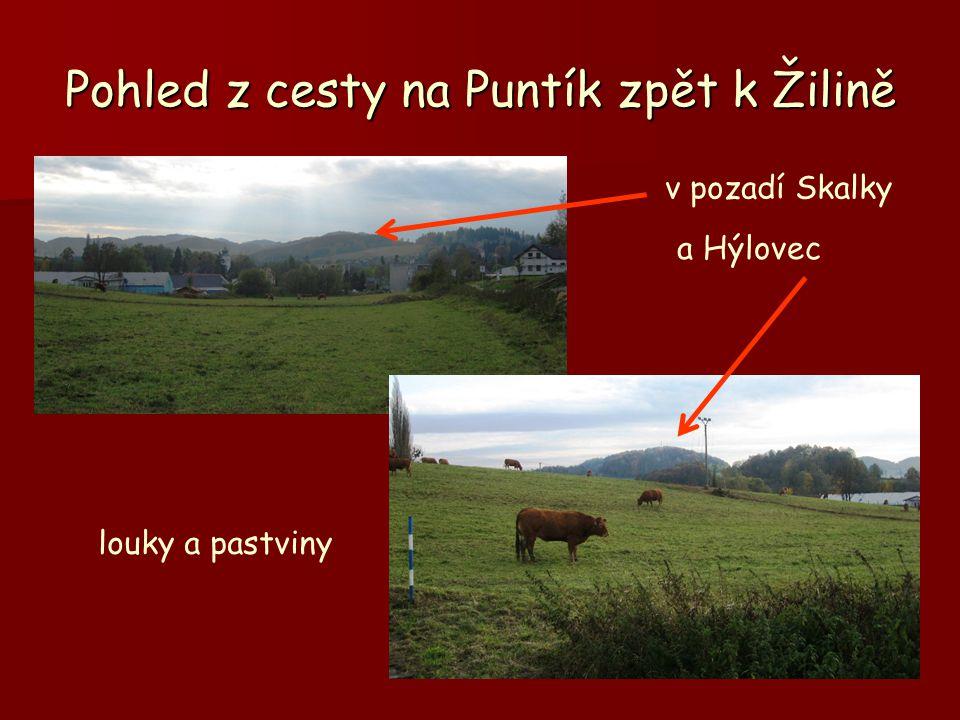 Pohled z cesty na Puntík zpět k Žilině a Hýlovec louky a pastviny v pozadí Skalky