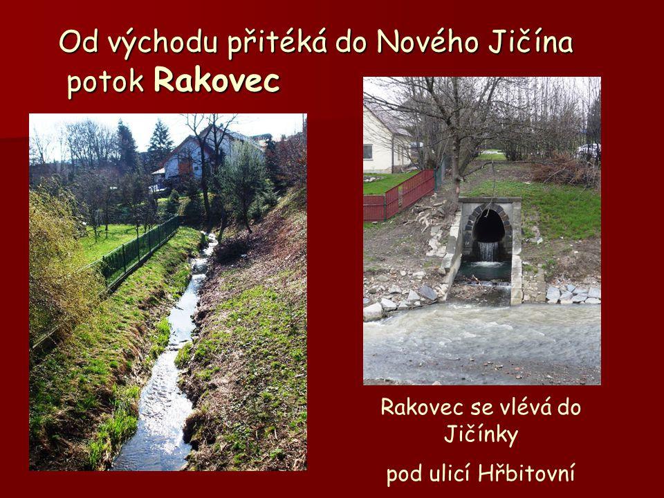 Od východu přitéká do Nového Jičína potok Rakovec Od východu přitéká do Nového Jičína potok Rakovec Rakovec se vlévá do Jičínky pod ulicí Hřbitovní