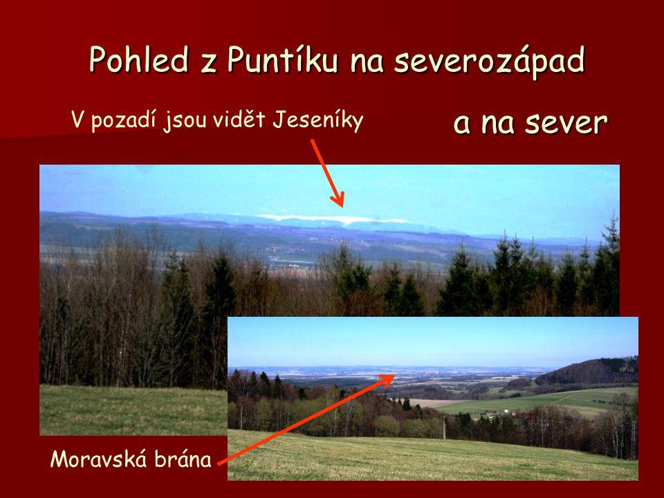 Pohled z Puntíku na severozápad V pozadí jsou vidět Jeseníky a na sever Moravská brána