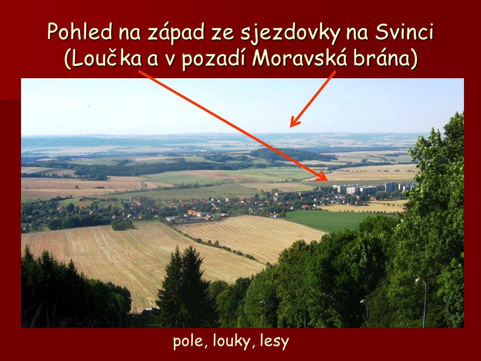 Pohled na západ ze sjezdovky na Svinci (Loučka a v pozadí Moravská brána) pole, louky, lesy