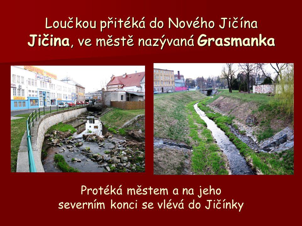 Loučkou přitéká do Nového Jičína Jičina, ve městě nazývaná Grasmanka Protéká městem a na jeho severním konci se vlévá do Jičínky