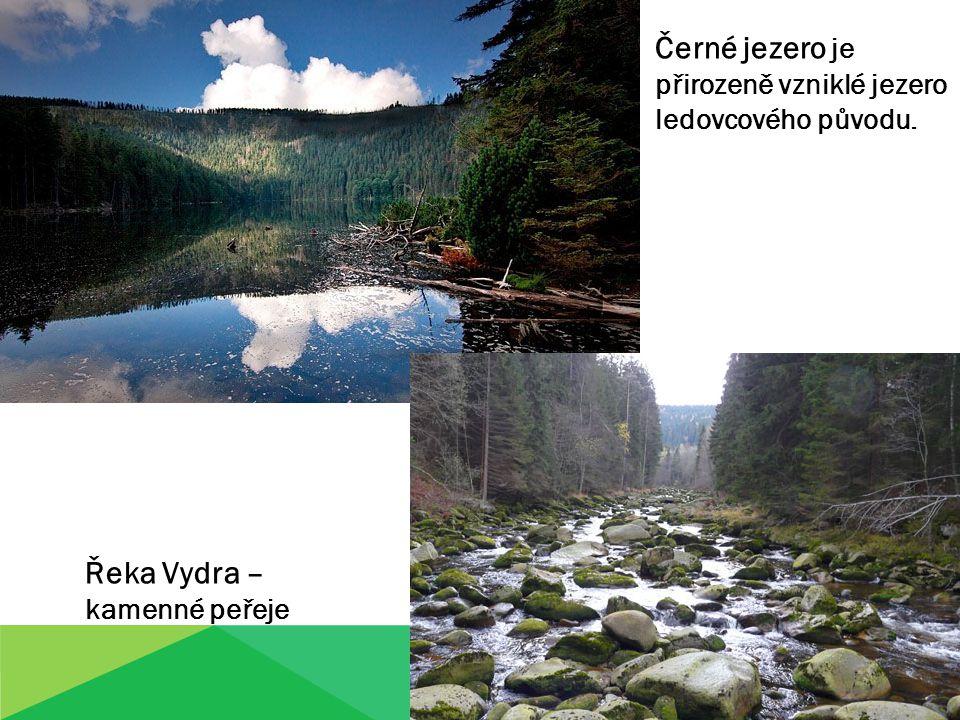 Černé jezero je přirozeně vzniklé jezero ledovcového původu. Řeka Vydra – kamenné peřeje