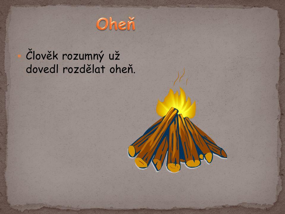  Člověk rozumný už dovedl rozdělat oheň.