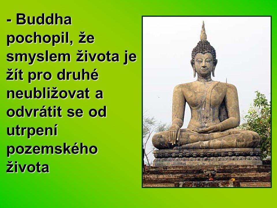 - Buddha pochopil, že smyslem života je žít pro druhé neubližovat a odvrátit se od utrpení pozemského života