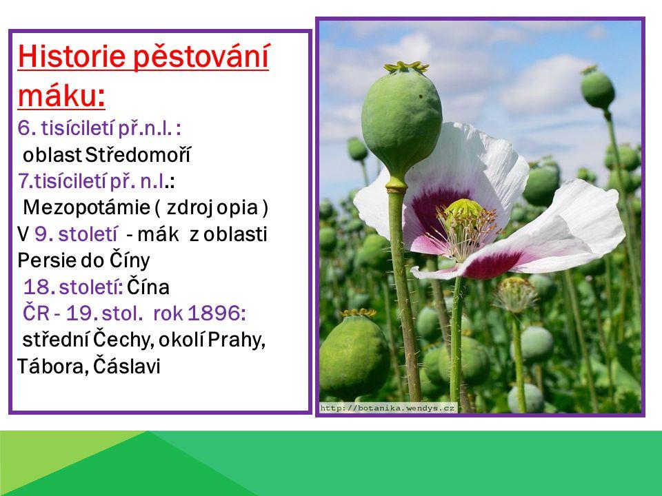 Historie pěstování máku: 6. tisíciletí př.n.l. : oblast Středomoří 7.tisíciletí př. n.l.: Mezopotámie ( zdroj opia ) V 9. století - mák z oblasti Pers