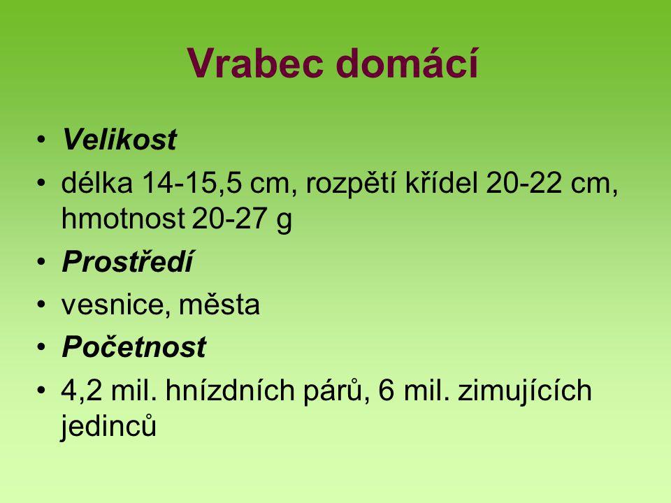 Vrabec domácí Velikost délka 14-15,5 cm, rozpětí křídel 20-22 cm, hmotnost 20-27 g Prostředí vesnice, města Početnost 4,2 mil. hnízdních párů, 6 mil.