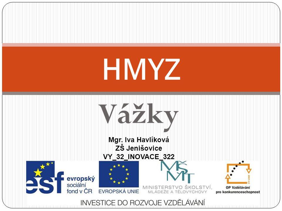Vážky HMYZ Mgr. Iva Havlíková ZŠ Jenišovice VY_32_INOVACE_322