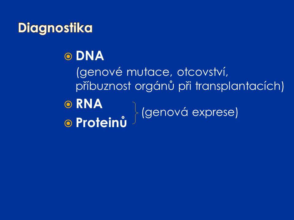  DNA (genové mutace, otcovství, příbuznost orgánů při transplantacích)  RNA  Proteinů (genová exprese)