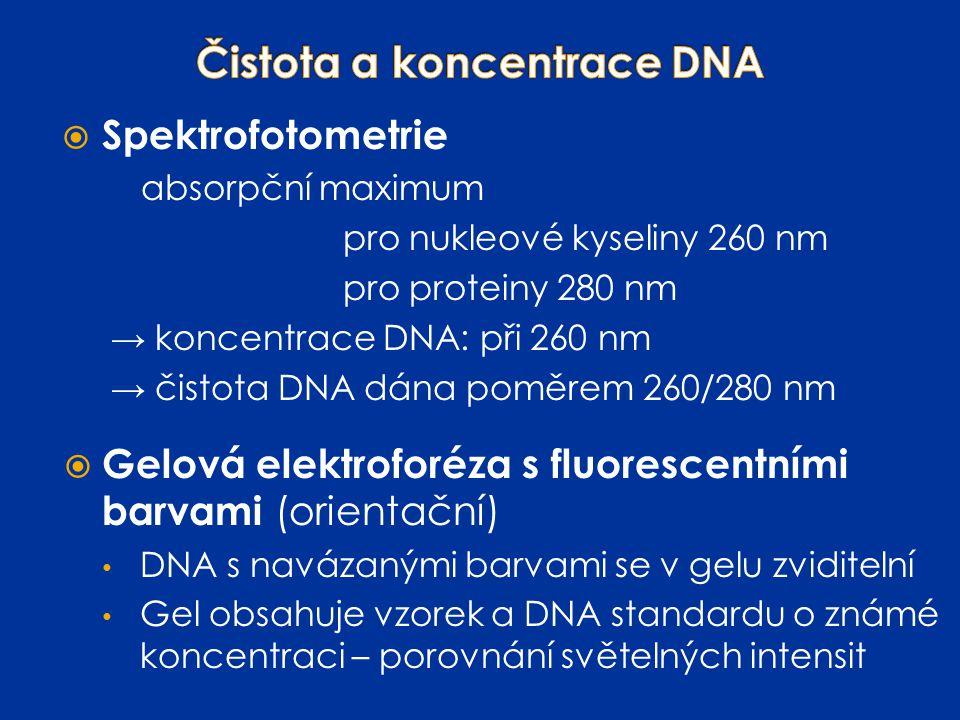  Spektrofotometrie absorpční maximum pro nukleové kyseliny 260 nm pro proteiny 280 nm → koncentrace DNA: při 260 nm → čistota DNA dána poměrem 260/28