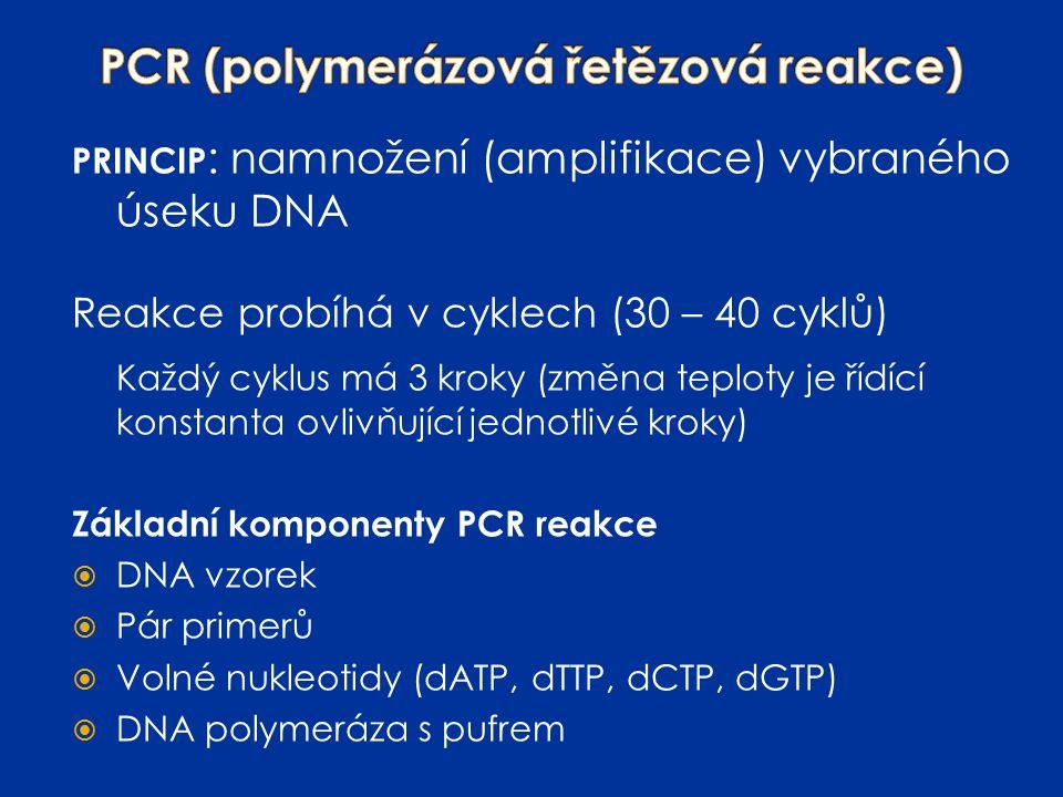 PRINCIP : namnožení (amplifikace) vybraného úseku DNA Reakce probíhá v cyklech (30 – 40 cyklů) Každý cyklus má 3 kroky (změna teploty je řídící konsta