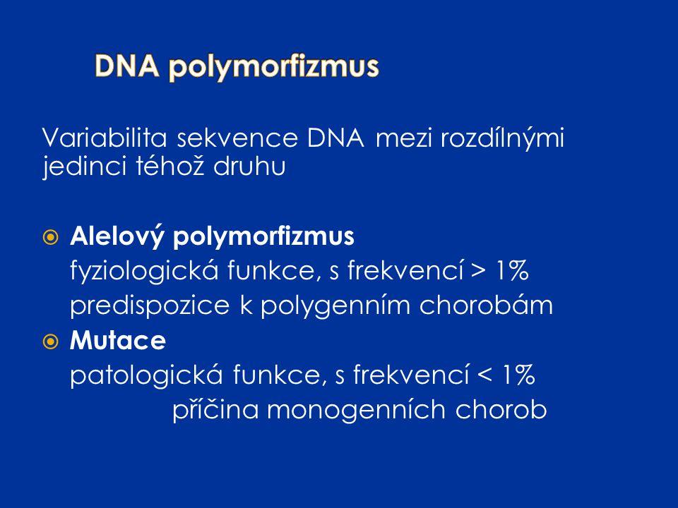 Variabilita sekvence DNAmezi rozdílnými jedinci téhož druhu  Alelový polymorfizmus fyziologická funkce, s frekvencí > 1% predispozice k polygenním ch