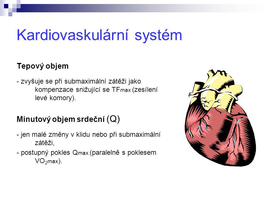 Kardiovaskulární systém Tepový objem - zvyšuje se při submaximální zátěži jako kompenzace snižující se TF max (zesílení levé komory).