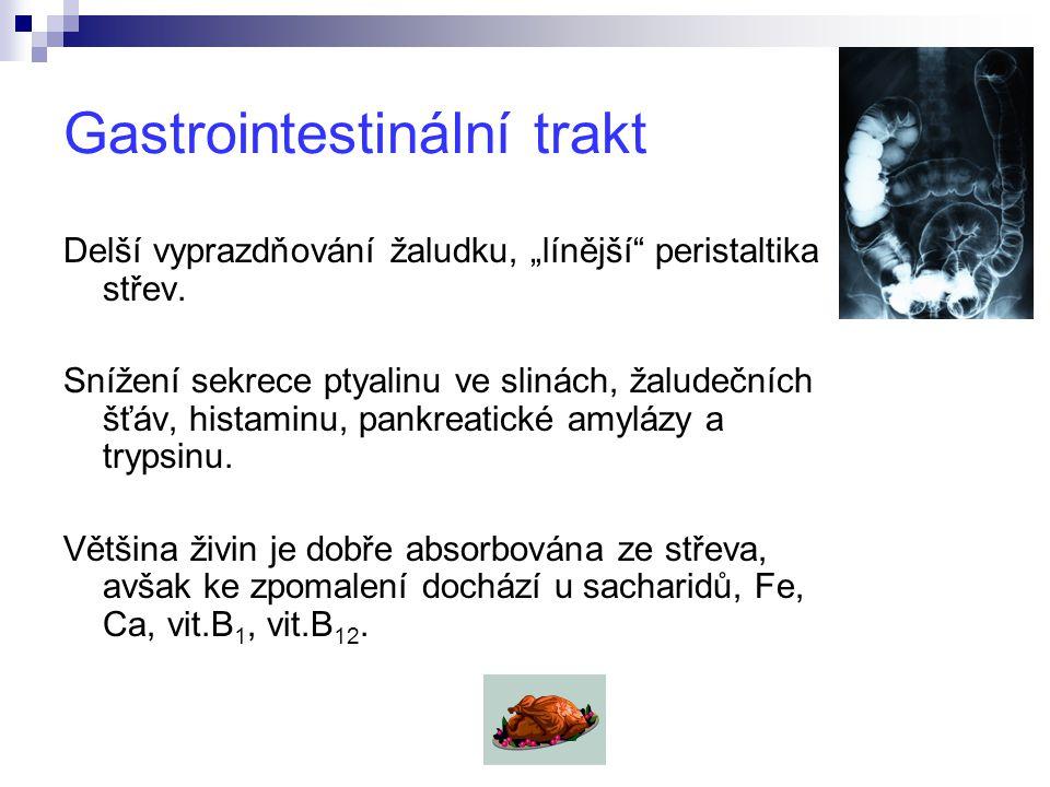 """Gastrointestinální trakt Delší vyprazdňování žaludku, """"línější peristaltika střev."""