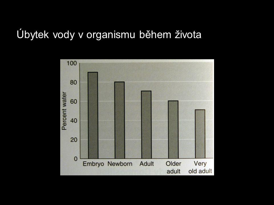 """Kardiovaskulární systém Anatomické změny: - zesílení stěny levé komory jako následek zvýšení systolického tlaku - ztráta elasticity velkých artérií způsobuje: 1) zvýšení TKs, 2) změny v šíření pulzní vlny, 3) zvýšení tlaku, proti kterému musí být vypuzena krev do oběhu (""""afterload ), - redukce tonu žil a tvorba varixů způsobující zvýšení kapacity žilního systému a zhoršení žilního návratu."""