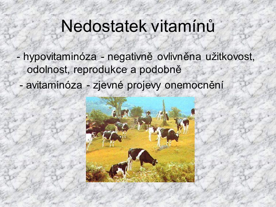Biotin (vitamín H) v krmivech rostlinného i živočišného původu, s výjimkou obilovin součást enzymů podílejících se na glukoneogenezi, syntéze mastných kyselin a metabolizmu energie nedostatek - změny na kůži, ekzémy, symetrické vypadávání srsti, anemie a poruchy plodnosti, u drůbeže podporuje vznik perózy