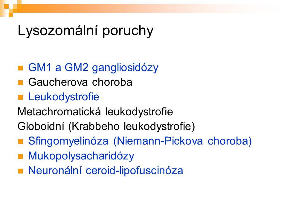 Lysozomální poruchy GM1 a GM2 gangliosidózy Gaucherova choroba Leukodystrofie Metachromatická leukodystrofie Globoidní (Krabbeho leukodystrofie) Sfing