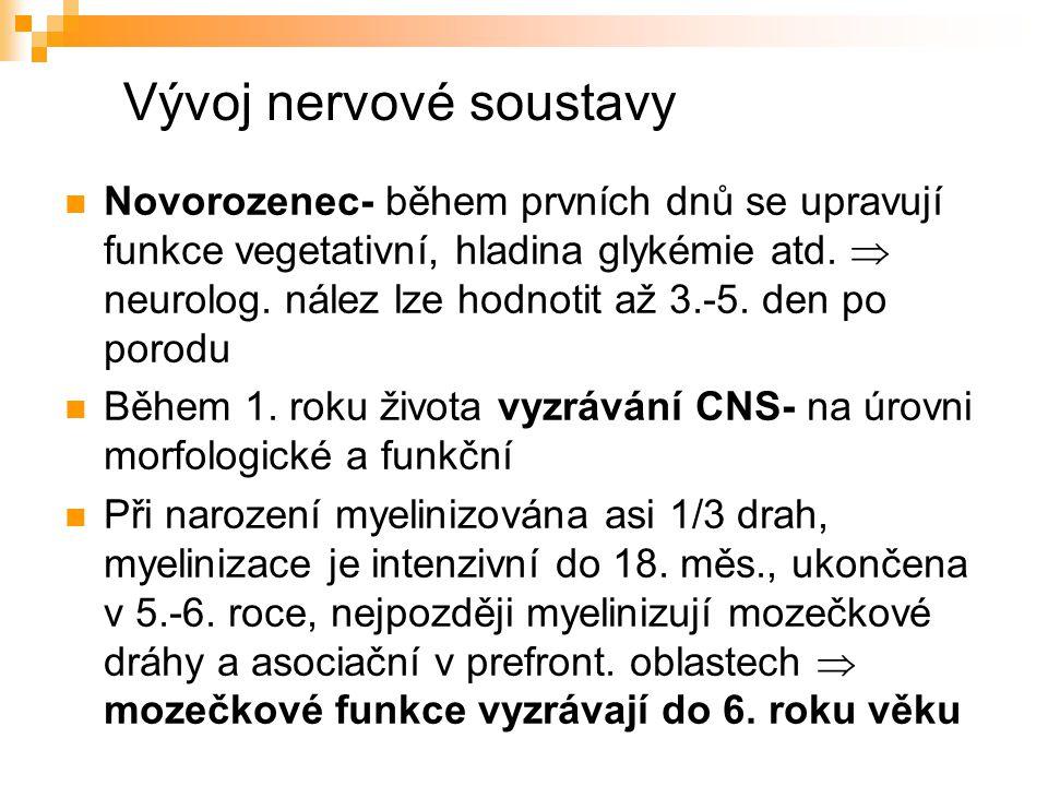 Vývoj nervové soustavy Novorozenec- během prvních dnů se upravují funkce vegetativní, hladina glykémie atd.  neurolog. nález lze hodnotit až 3.-5. de