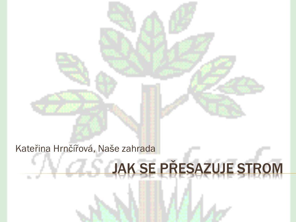 Kateřina Hrnčířová, Naše zahrada