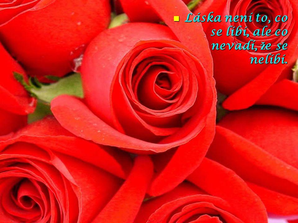 Láska není to, co se líbí, ale co nevadí, ž e se nelíbí.