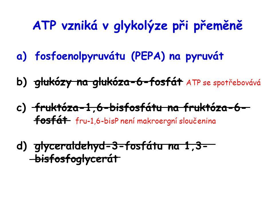 ATP vzniká v glykolýze při přeměně a)fosfoenolpyruvátu (PEPA) na pyruvát b)glukózy na glukóza-6-fosfát ATP se spotřebovává c)fruktóza-1,6-bisfosfátu n