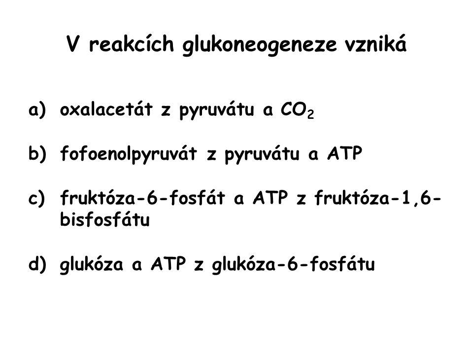 V reakcích glukoneogeneze vzniká a)oxalacetát z pyruvátu a CO 2 b)fofoenolpyruvát z pyruvátu a ATP c)fruktóza-6-fosfát a ATP z fruktóza-1,6- bisfosfát