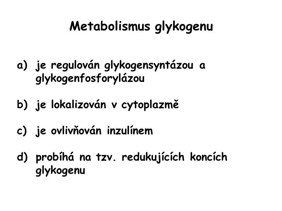 Metabolismus glykogenu a)je regulován glykogensyntázou a glykogenfosforylázou b)je lokalizován v cytoplazmě c)je ovlivňován inzulínem d)probíhá na tzv