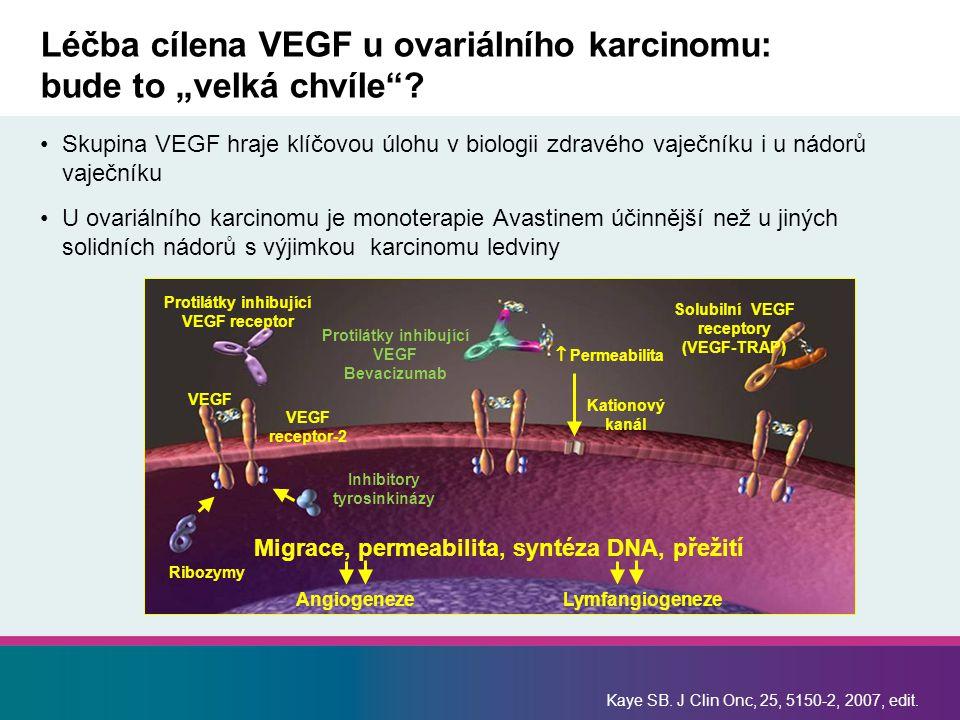 """Léčba cílena VEGF u ovariálního karcinomu: bude to """"velká chvíle""""? Skupina VEGF hraje klíčovou úlohu v biologii zdravého vaječníku i u nádorů vaječník"""