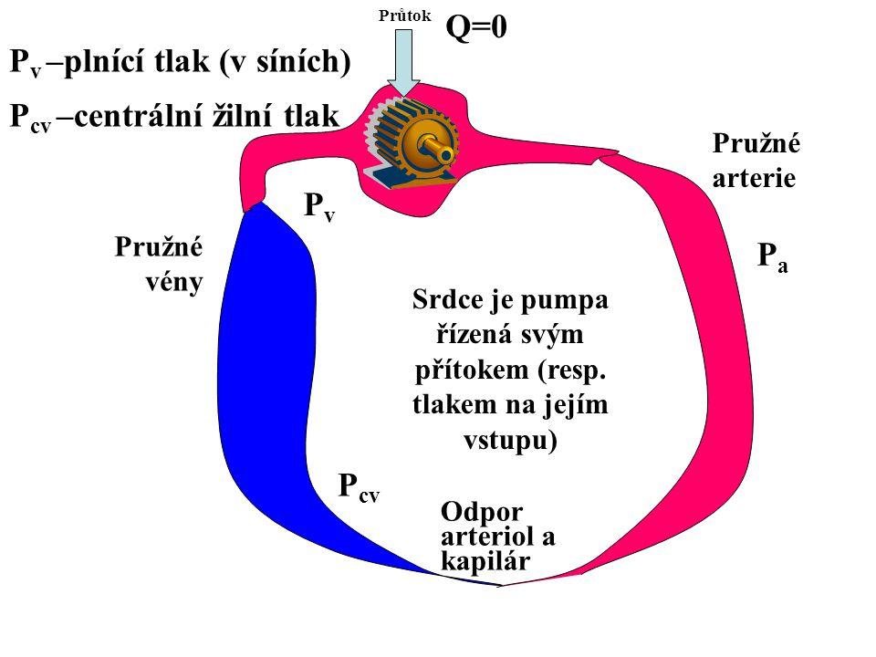 Srdce je pumpa řízená svým přítokem (resp.