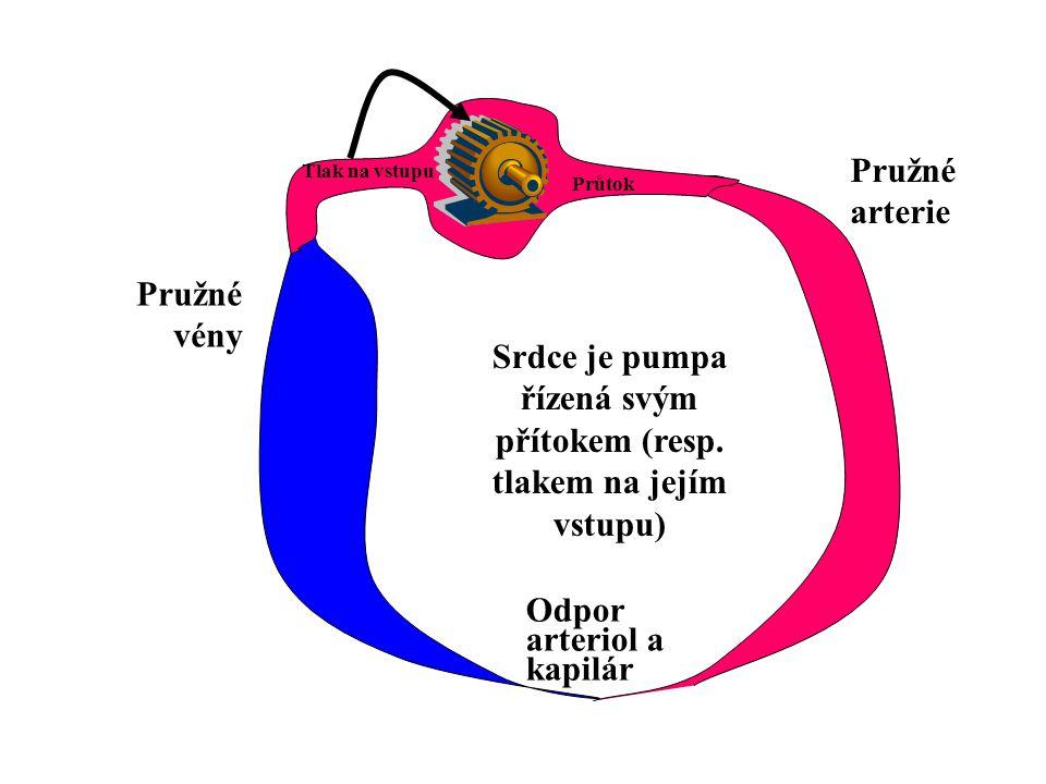 Minutový objem srdeční Tlak na konci diastoly Venózní (plnící) křívka Frank-Starlingova křívka