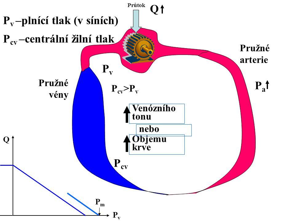 Průtok Pružné arterie Pružné vény PaPa Q PvPv Q PmPm Venózního tonu Objemu krve nebo P cv P v –plnící tlak (v síních) P cv –centrální žilní tlak PvPv P cv >P v