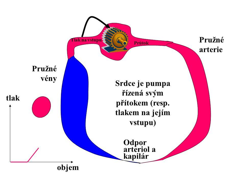 Průtok Odpor arteriol a kapilár Pružné arterie Pružné vény PaPa PvPv Q PmPm P v <0 Q už nemůže stoupat Pružné vény kolabují P cv P v –plnící tlak (v síních) P cv –centrální žilní tlak PvPv P cv >P v