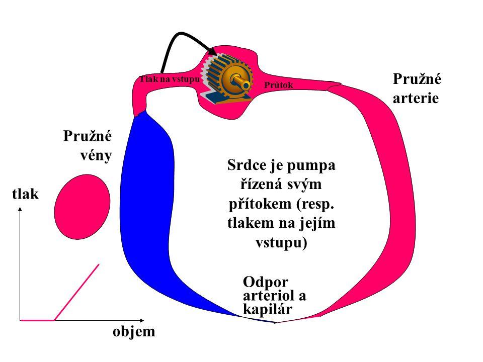 Minutový objem srdeční Tlak na konci diastoly 0 Zvýšení perif. odporu