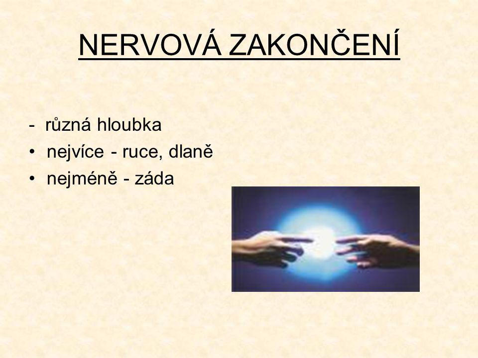 NERVOVÁ ZAKONČENÍ - různá hloubka nejvíce - ruce, dlaně nejméně - záda
