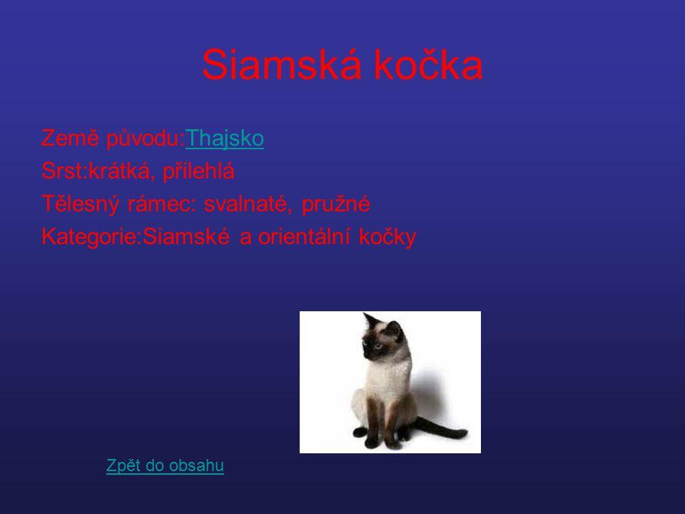 Siamská kočka Země původu:ThajskoThajsko Srst:krátká, přilehlá Tělesný rámec: svalnaté, pružné Kategorie:Siamské a orientální kočky Zpět do obsahu