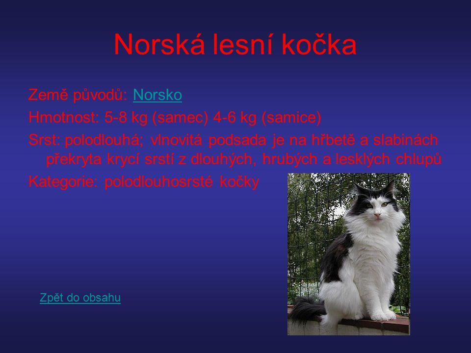 Norská lesní kočka Země původů: NorskoNorsko Hmotnost: 5-8 kg (samec) 4-6 kg (samice) Srst: polodlouhá; vlnovitá podsada je na hřbetě a slabinách přek