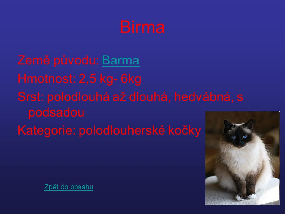 Birma Země původu: BarmaBarma Hmotnost: 2,5 kg- 6kg Srst: polodlouhá až dlouhá, hedvábná, s podsadou Kategorie: polodlouherské kočky Zpět do obsahu